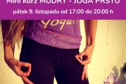 Mini kurz Mudry - jóga prstů