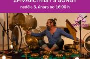Zpívající mísy a gongy