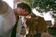 Trojité kraví požehnání