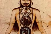 Čakra jóga: Od homo animalis k homo cosmologicus