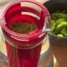 Čaj z čerstvých smrkových výhonků je jemný, bude vám chutnat.